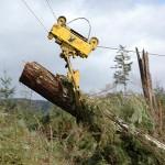Logging Carriages La Grande OR